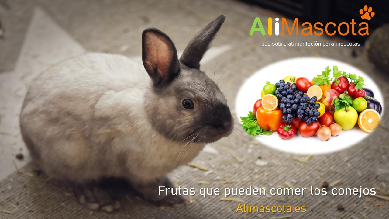 Frutas que pueden comer los conejos