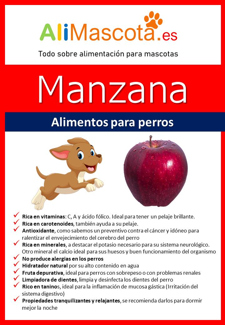 manzana para perros