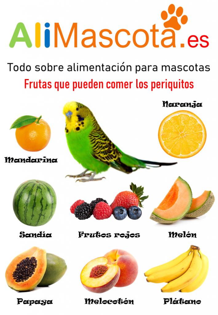 Frutas para periquitos