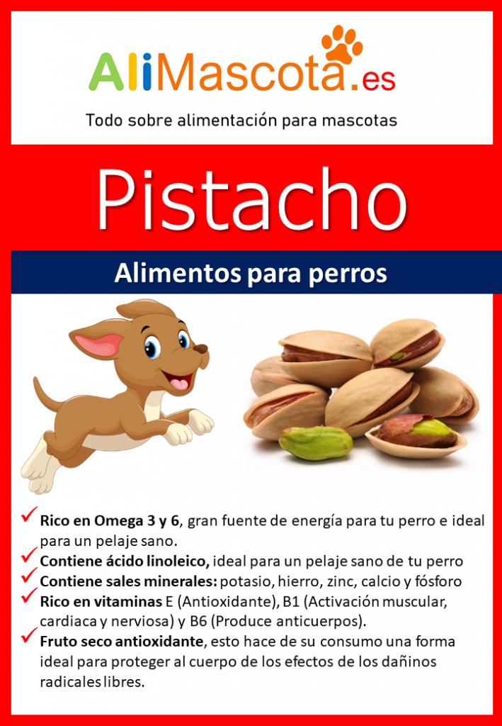 Pistachos para perros