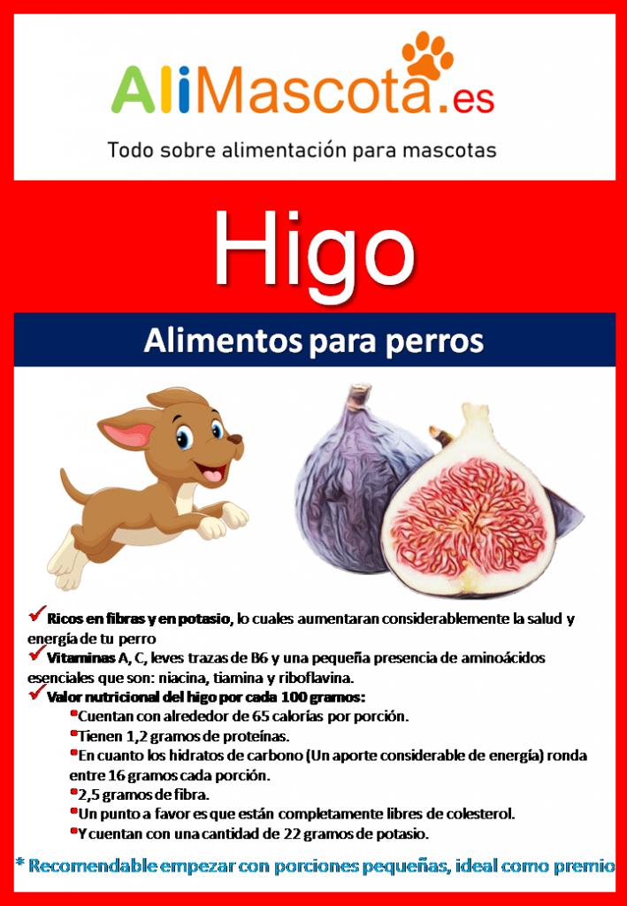 Beneficios de los higos para perros