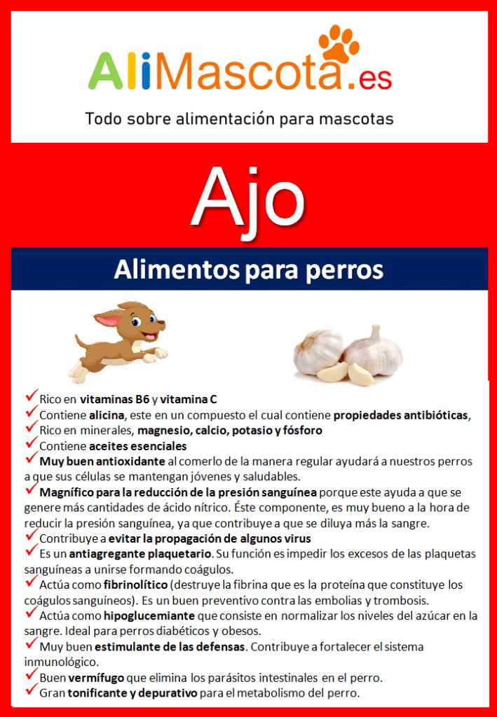 Beneficios del ajo para perros