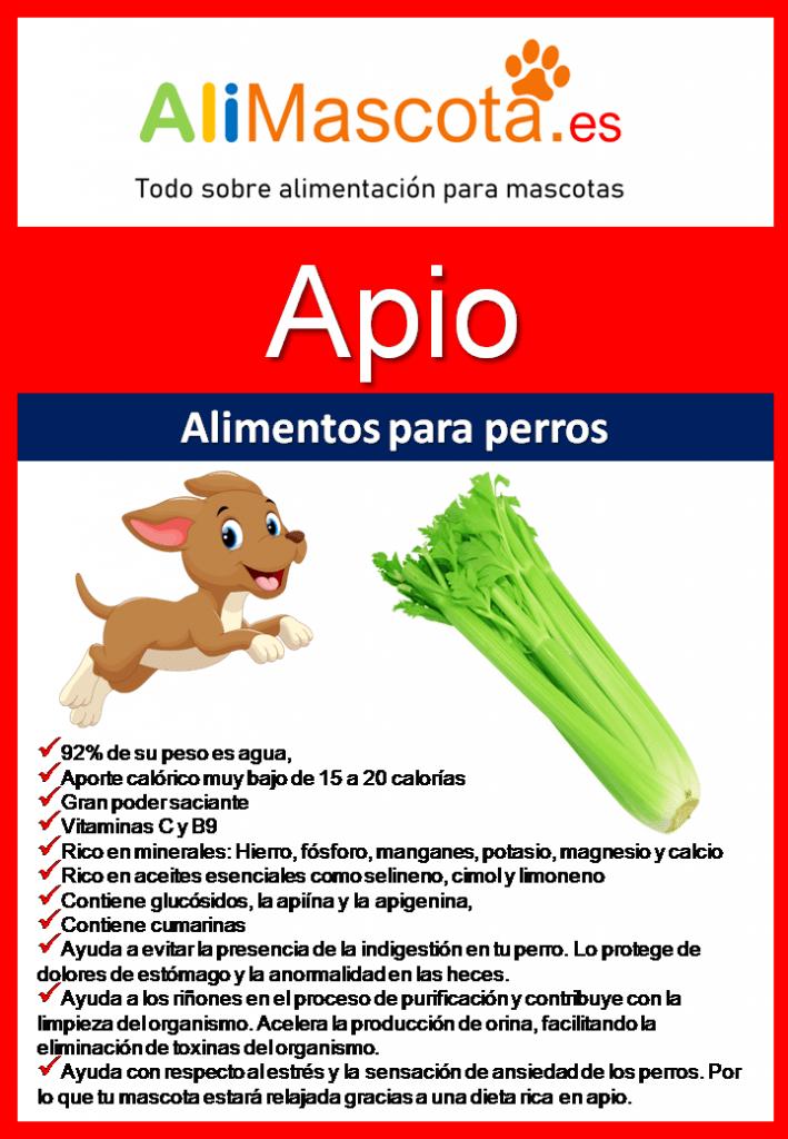 Beneficios del apio para perros