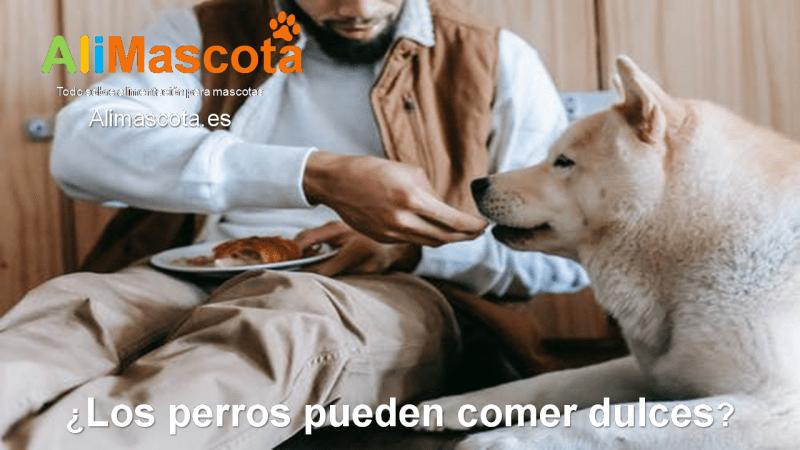 Los perros pueden comer dulces