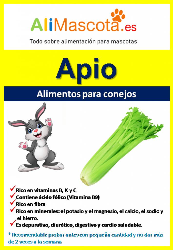 Beneficios del apio para conejos