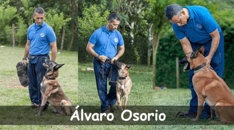 curso EDUCANINO - ÁLVARO OSORIO